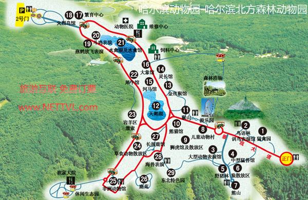 沿途有路标指示 哈尔滨动物园乘车路线:  1,公交专线   (1)地点