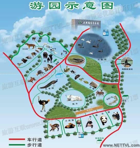 首页 旅游地图 景点导游图 安徽旅游景点地图 大熊猫生态乐园地图