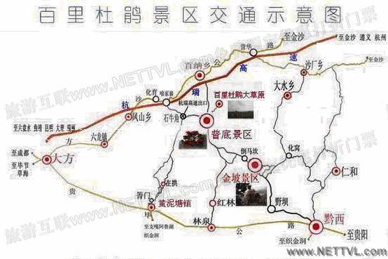 百里杜鹃地图(毕节百里杜鹃交通地图