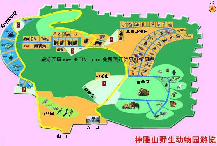神雕山动物园导游地图(神雕山野生动物园旅游地图