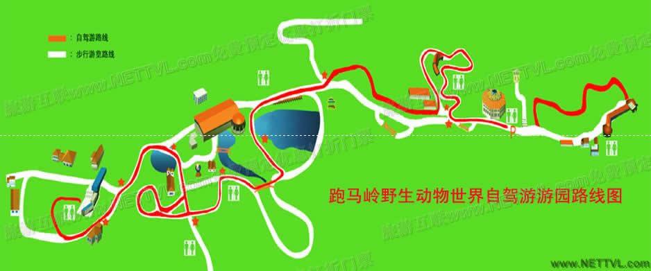跑马岭野生动物园自驾游游园路线图