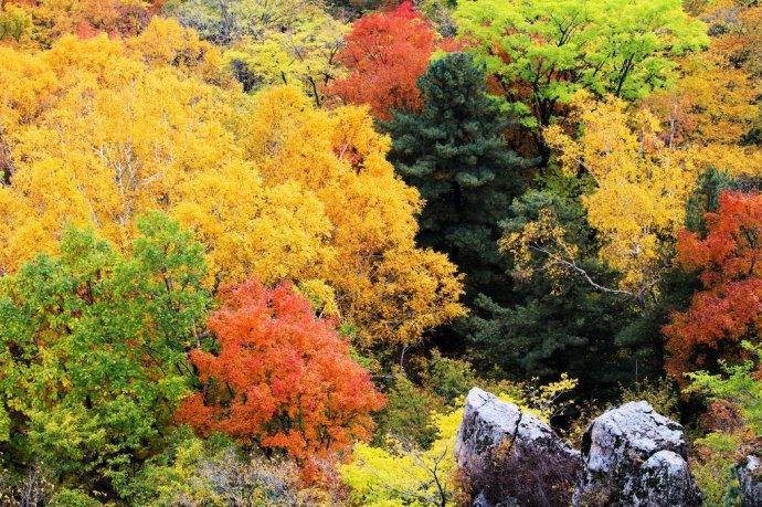 阿城吊水壶景区简介: 吊水壶景区是横头山国家森林公园的景区之一,是哈尔滨周边第一高峰,7月至9月的夏季,对游客而言,绝对是理想的避暑佳季。1.5亿年前形成的地质奇观-迎客峰、虎啸峰、天柱峰、通天谷、五指峰、鹰嘴峰、磨牙石壁、天门峰、天成洞等,堪称中国景色一绝,不禁使人感慨大自然的鬼斧神工。 令人流连忘返的九大自然景观。海拔627米的至高点烟囱峰,高耸入云,近前望去犹如用大块岩石层层砌成的烟囱;奇绝险峻的北峰;张口怒吼的狮嘴峰;怪石峥嵘的鸡冠峰;奇峰突起的祈祷圣地小南山;独坐山门迎客来的石猿;液