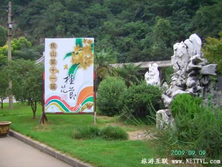 镇江焦山风景区桂花节
