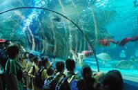 北京富国海底世界