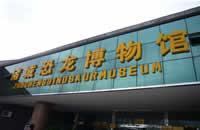 諸城恐龍博物館