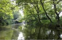 上海濱江森林公園