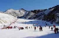 濟南香草園滑雪場