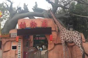 自貢彩燈公園動物園