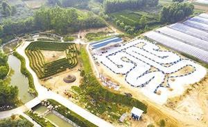 日照Hi世界農樂園