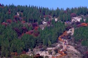 博山九龙峪山地公园