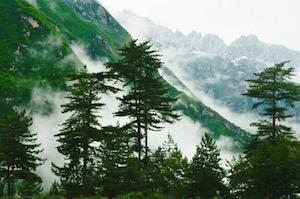 甘南翠峰山