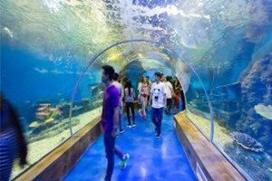菏泽三鲨海洋世界