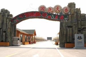 济宁四季牡丹生态园