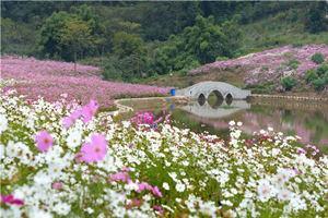 武陵石橋水鄉濕地公園