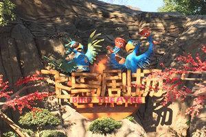 武漢東湖海洋樂園飛鳥世界