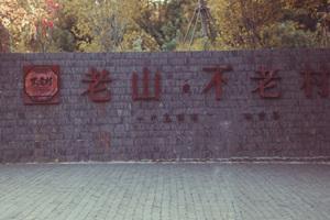 南京不老村