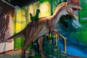 西安万达城市动物园