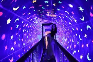 上海环球奇趣艺术馆