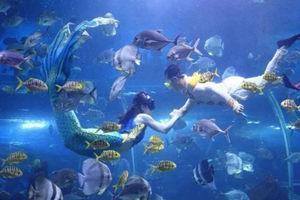 湘潭海立方海洋世界