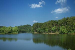 柳州君武森林公園