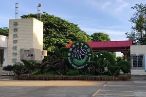 儋州热带植物园