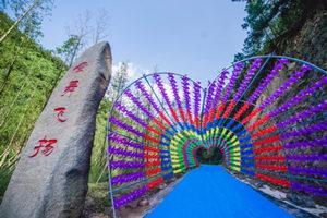 千島湖酉塢里螢火蟲主題公園
