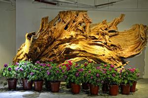 上海木文化博物館
