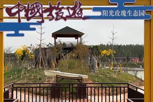 湛江陽光玫瑰生態園