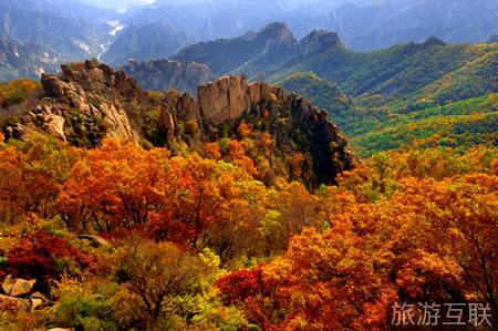 首页 旅游问答 河北旅游问答 祖山风景区重阳节有红叶吗?