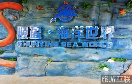 顺盈海洋世界坐落于顺盈时代广场的顺盈海洋世界占地1.