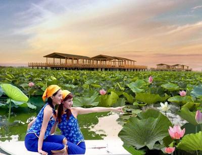 微山湖红荷湿地图片集_景区图片_旅游互联
