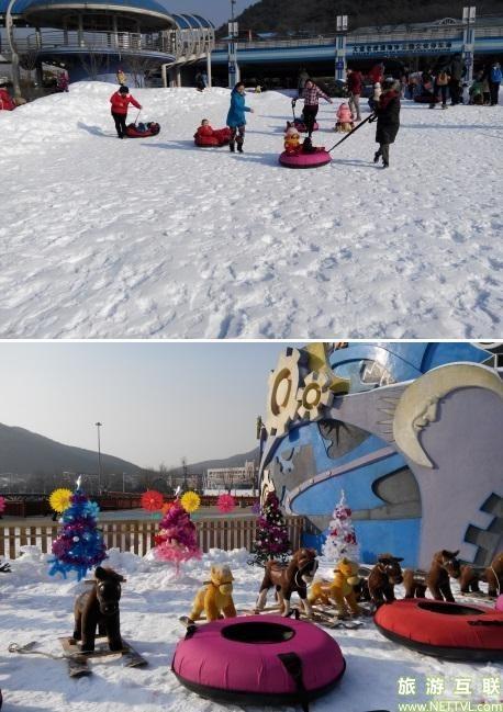 老虎滩海洋公园还为小朋友们设置了好多好玩的冰雪醒目,有小木马,滑雪