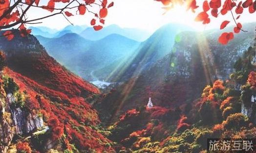 风景区开赛,网红现场直播精彩互动; 3,红叶节晚会将于10月16日在山东