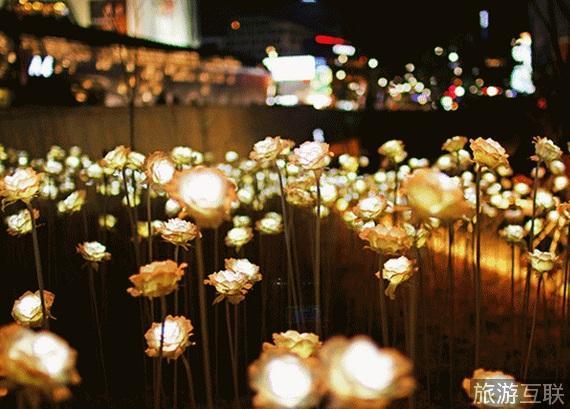 威海仙姑顶灯光节