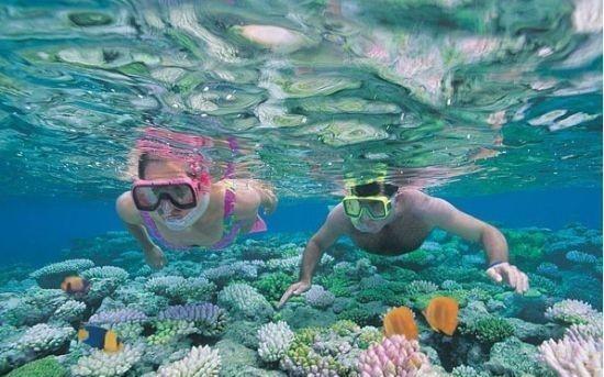 壁纸 海底 海底世界 海洋馆 水族馆 桌面 550_343