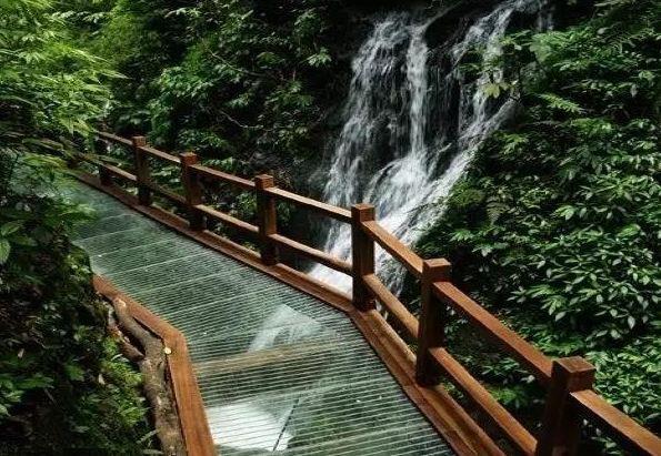 风车长廊,动物园,高空滑索,森林滑道,玻璃滑道(栈桥)广东东莞观音山