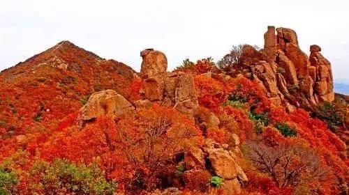 秦皇岛祖山有红叶吗?
