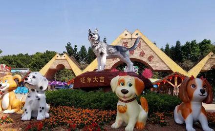 2018深圳野生动物园6月有夜场吗?深圳动物园6月夜场门票多少钱?