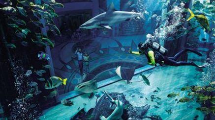 海南有几家水族馆?三亚海棠湾亚特兰蒂斯水族馆旅游路线?