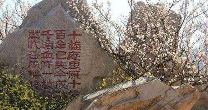 十梅庵村位于青岛市李沧区湘潭路街道辖区东部,东临围子山,南临虎头石