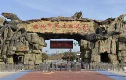 诸城新动物园动物多吗?诸城野生动物园有什么?