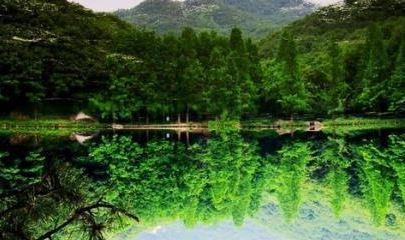 洛阳天池山风景区端午节