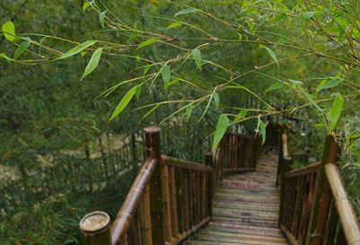 宜兴陶祖圣境风景区哪些