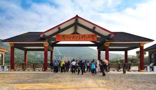枣庄到兰陵野生动物园开车怎么去?兰陵宝山前野生动物