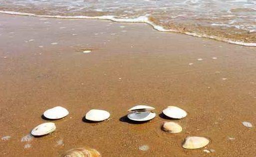 好玩1 位于秦皇岛北戴河新区昌黎新开口码头团林乡蟹贝湾景区,是
